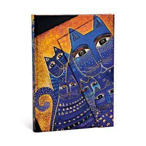 Katzen des Mittelmeers - Angle